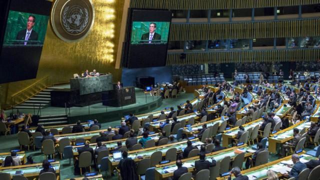 ONU 2015